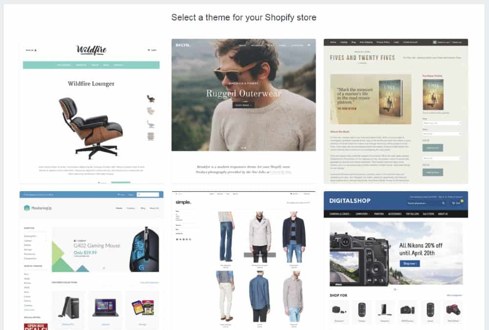 Shopify Store Examples